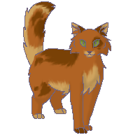 File:MaplestarUnknown.png
