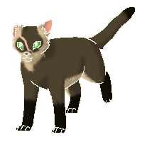 File:FerretspringStarclan.png