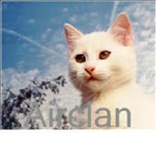 File:AirClan.jpg