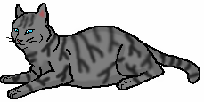 File:Silvertabby.png