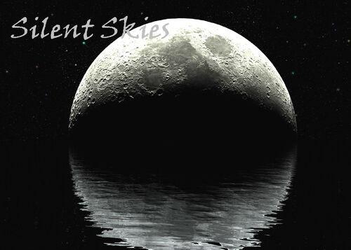 Silent skies