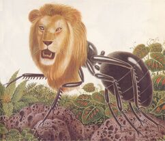 Mermecolion ant-lion-1-