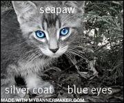 Seapaw