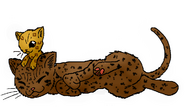 Leopardkit and Spottedfeather.LC