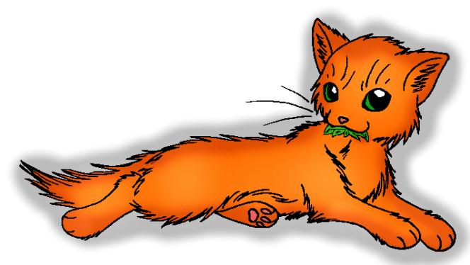 Foxpelt