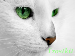Frostkit