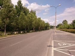 Przy Bażantarni (ulica)