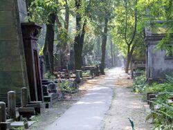 Cmentarz Powązkowski alejka.jpg