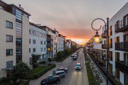 Wilanow1 Linearny Czerwiec 2015 fot.jpg