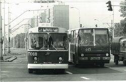 Trolejbus (linia 51)