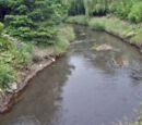Sumas River
