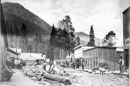 Silverton1893