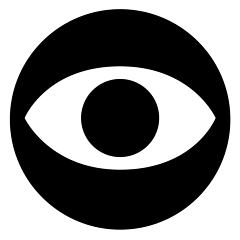 File:Privacy-invasion-icon-with-border.png