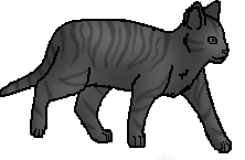 File:Tabby 6.png