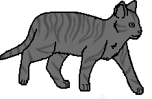 File:Tabby 2.png
