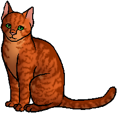 Firestar Warrior Cats Wiki