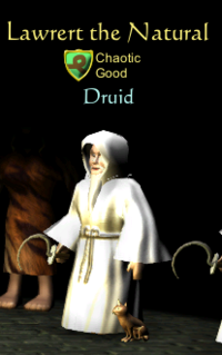Druid class