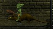Giant Rat Goblin Rider