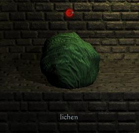 File:Lichen.png