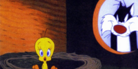 Tweety/Gallery
