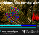 Nutritious Rice for the World