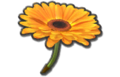 File:120px-FlowerGliderMK8.png