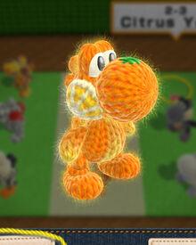 YWW 2-3 Citrus Yoshi