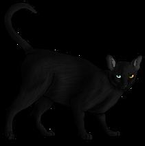 Nightshade.adult