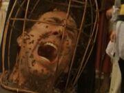 Cagecage