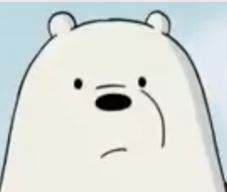 File:Ice Bear's face.jpg