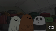 S02 Baby Bears on a Plane (24)