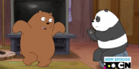Panda Bear/Gallery/My Clique
