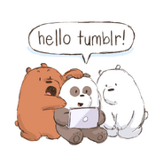 Hello tumblr