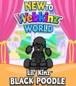 LilKinz Black Poodle New