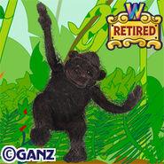 Preview gorilla