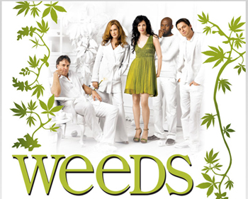 File:Weedscd3.jpg