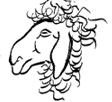 Datei:Mouton.jpg