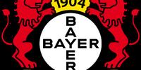 2013-14 Bayer 04 Leverkusen Home