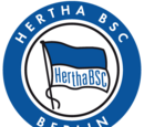 2013-14 Hertha BSC Away