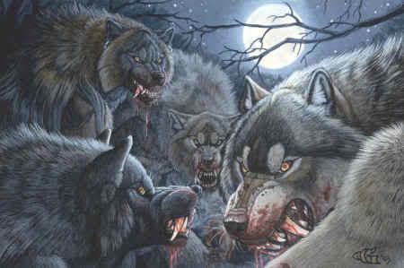 File:Werewolf pack.jpg
