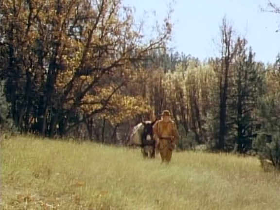 File:The Life and Times of Grizzly Adams - Adams' Cub - Image 4.png