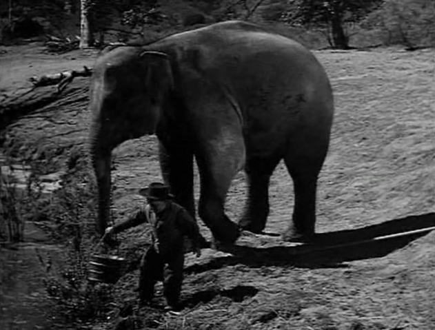 File:Rawhide - The Prairie Elephant - Image 2.png
