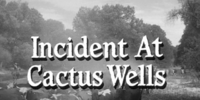 Incident at Cactus Wells