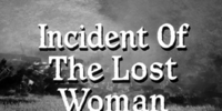 Incident of the Lost Woman
