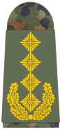 File:Army General.png