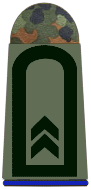File:Army Staff Sergeant.png