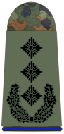 File:Army Colonel.png