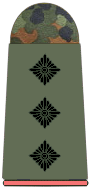 File:Army Captain.png