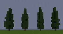CypressS