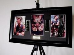 Predator Movie Film Cell Schwarzenegger Framed